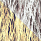 Shave Animal Fur1 - 3DOcean Item for Sale