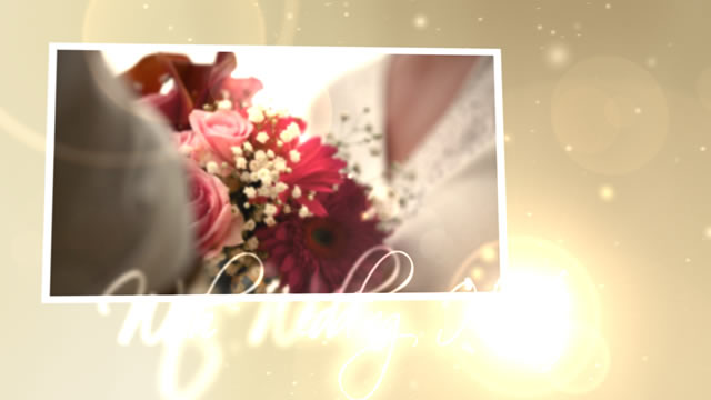 Wedding Intro Video Effects Stock Videos From VideoHive