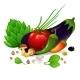 Vegetables Set on White Background - GraphicRiver Item for Sale