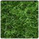 Seamless Grass Textures - 3DOcean Item for Sale