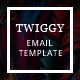 Twiggy - Fashion E-Newsletter Template - GraphicRiver Item for Sale