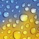 Autumn Backgrounds With Water Drops - GraphicRiver Item for Sale