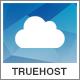 Truehost - Responsive Hosting WordPress Theme - ThemeForest Item for Sale