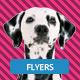 Pet Shop Flyer - GraphicRiver Item for Sale