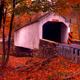 Covered Bridge - VideoHive Item for Sale
