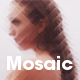 Mosaic - 2D Blurred Pixel Triangulation - GraphicRiver Item for Sale