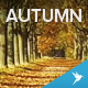 Flying Over the Forrest Road in Autumn - VideoHive Item for Sale
