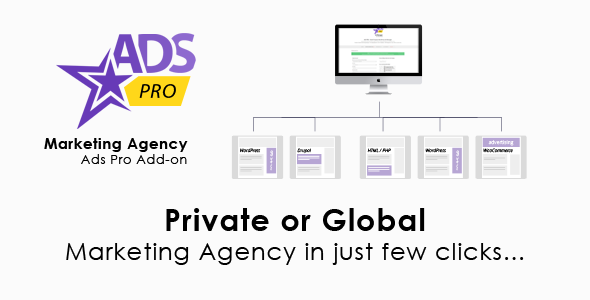 Ads Pro Add-on - WordPress Marketing Agency Download