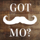 Movember Photo Slideshow - VideoHive Item for Sale