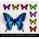 Butterfly on Transparent Background - GraphicRiver Item for Sale