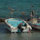 Beached Boats - VideoHive Item for Sale