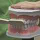Female Dental Assistant Brushing Teeth - VideoHive Item for Sale
