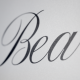 Beauty - Animated Handwriting Typeface - VideoHive Item for Sale