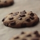Chocolate Chip Cookies After Baking - VideoHive Item for Sale