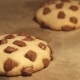 Chocolate Cookies Baking In The Oven - VideoHive Item for Sale