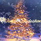 Winter Holiday - VideoHive Item for Sale