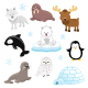 Collection of Arctic Animals - GraphicRiver Item for Sale