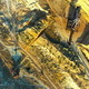 Flying Over The Ore Quarry - VideoHive Item for Sale