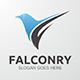Falconry Logo  - GraphicRiver Item for Sale