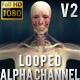 Human Body Anatomy kit  4 Animations V2 - Man - VideoHive Item for Sale