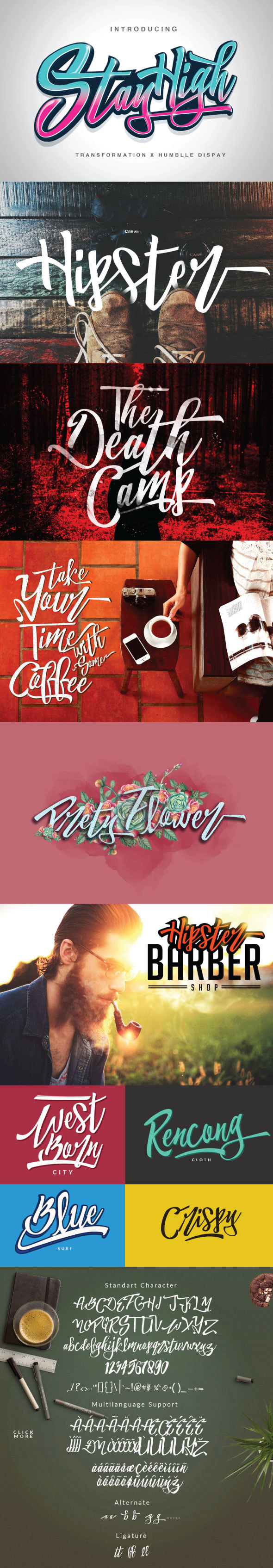 Bold Script Fonts from GraphicRiver