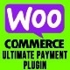 WooCommerce Ultimate Payment Plugin for Bluepay, NMI, and Braintree Payments - CodeCanyon Item for Sale