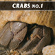 Crabs No.1 - VideoHive Item for Sale