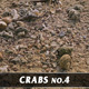 Crabs No.4 - VideoHive Item for Sale