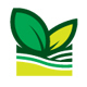 Organic Spring - GraphicRiver Item for Sale