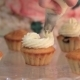 Chef Is Decorating Cupcakes For a Party - VideoHive Item for Sale