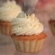 Whipped Cream Frosting Applied To Berry Cupcakes - VideoHive Item for Sale