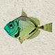Vintage Sea Life Pack1 - GraphicRiver Item for Sale