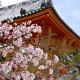 Romantic Japanese Ballad - AudioJungle Item for Sale