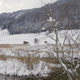 Winter Atmosphere at a Lake - VideoHive Item for Sale