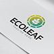 Eco Leaf Logo - GraphicRiver Item for Sale