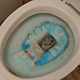 Cleaning A Dirty Toilet - VideoHive Item for Sale