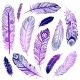 Set of Ethnic Feathers  - GraphicRiver Item for Sale