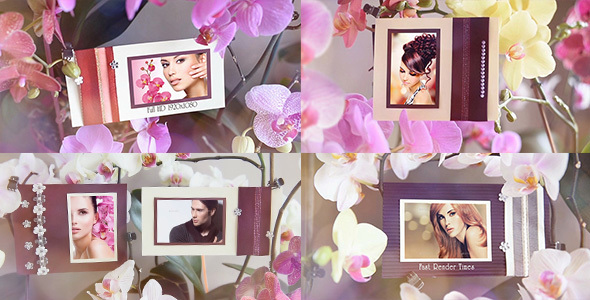 Photo Gallery in Flowers