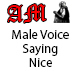 Male Voice Saying Nice