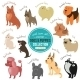 Vector Dogs And Puppies Depicting Different - GraphicRiver Item for Sale