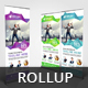 Business Roll Up Banner V32 - GraphicRiver Item for Sale