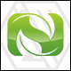 Nature Leaf - Letter N Logo - GraphicRiver Item for Sale