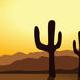 Wild West Sunrise - AudioJungle Item for Sale