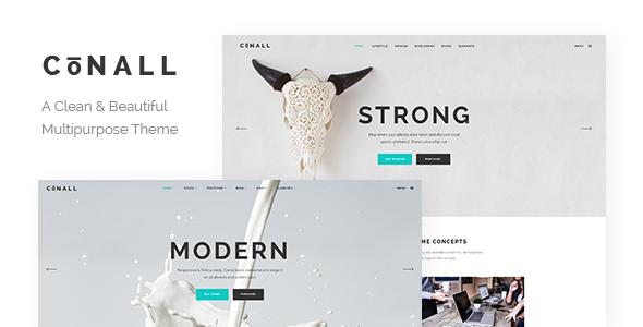 Conall - Clean Multipurpose Theme