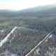 Aerial Forest  - VideoHive Item for Sale
