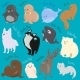 Set of Cartoon Winter North Animal Icons - GraphicRiver Item for Sale