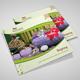Spa Brochure Square Trifold - GraphicRiver Item for Sale