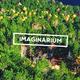 Imaginarium l Deep Opener - VideoHive Item for Sale
