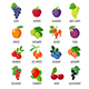 Set of Berries Icons with their Name - GraphicRiver Item for Sale