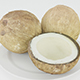 Coconuts 3D Model - 3DOcean Item for Sale